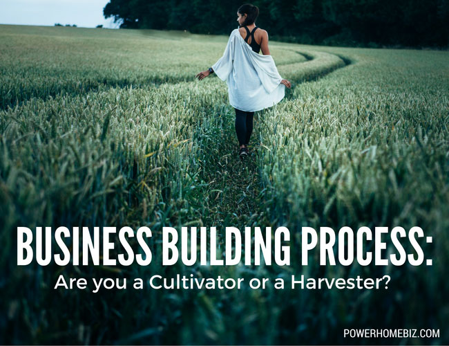 Business building process: Are you a Cultivator or a Harvester