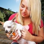How to Develop a Brand: Case of a Pet Sitting Business