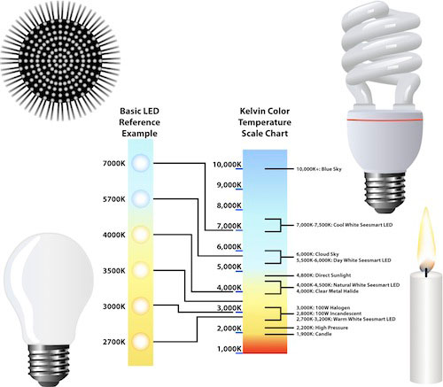 How the right light bulb can increase your productivity - Colors home office can enhance productivity ...