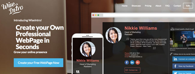 WiseIntro helping you create professional-looking web pages in seconds