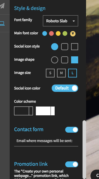 WiseIntro also has several design customization features