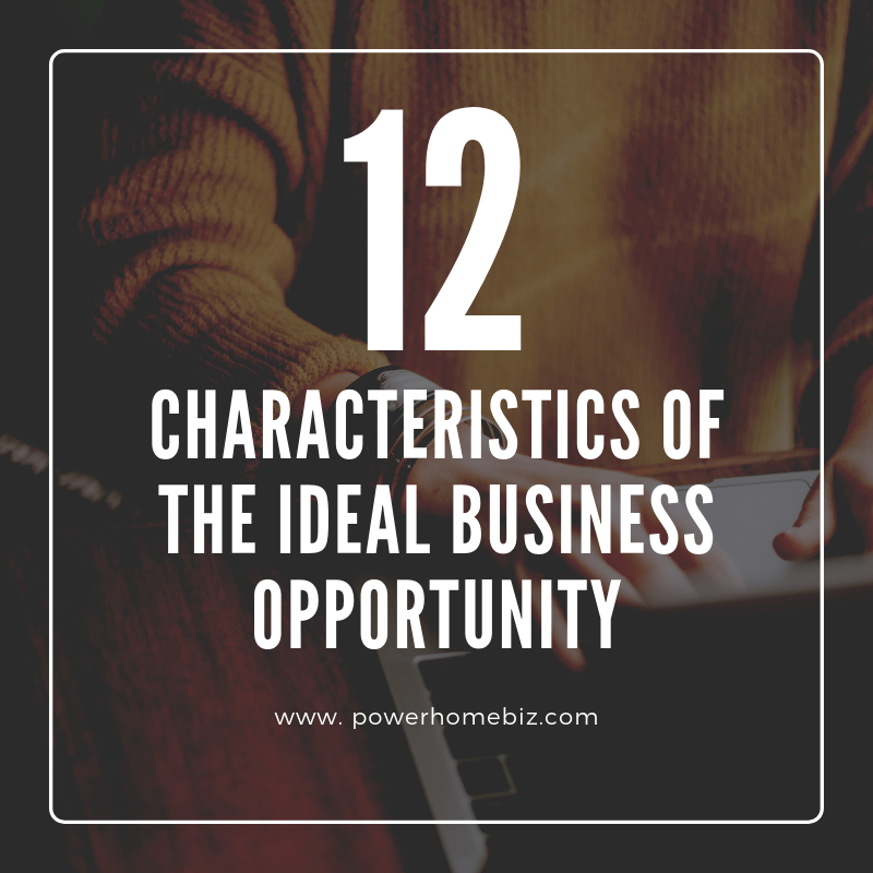 12 Characteristics of the Ideal Business Opportunity