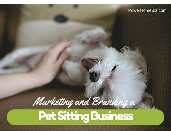 Marketing and Branding a Pet Sitting Business