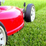 Marketing a Lawn Care and Landscaping Business
