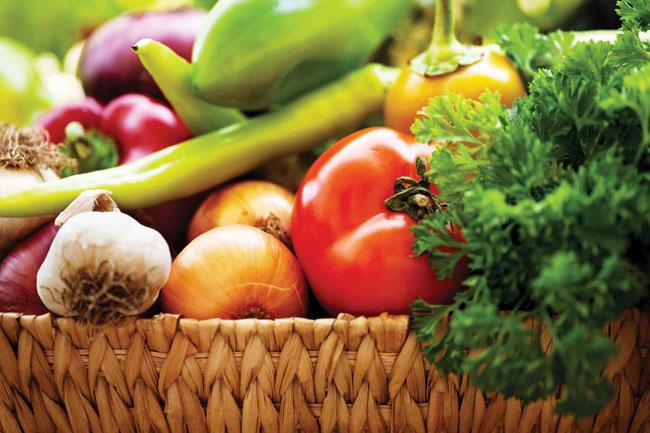 How to Start an Organic Farming Business