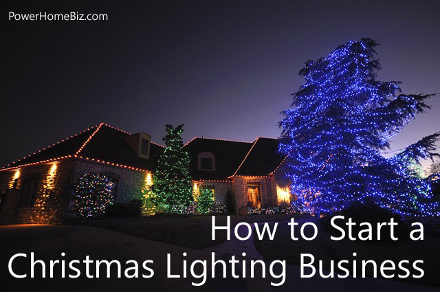 christmas lights business