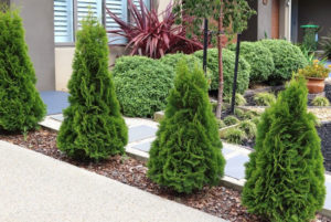 Landscaping: How to Spruce Up the Outside of Your Home Business
