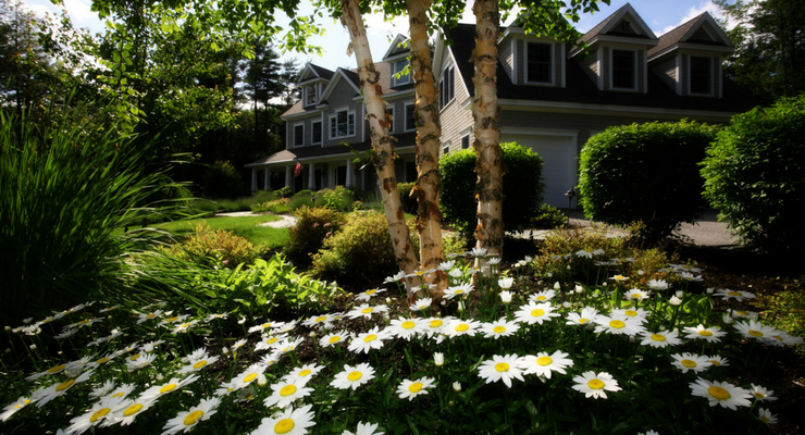 Adding Exterior Design to Your Landscaping Business