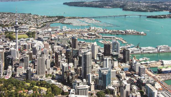 New Zealand, New Horizons - Adapting To An Auckland Coworking Space