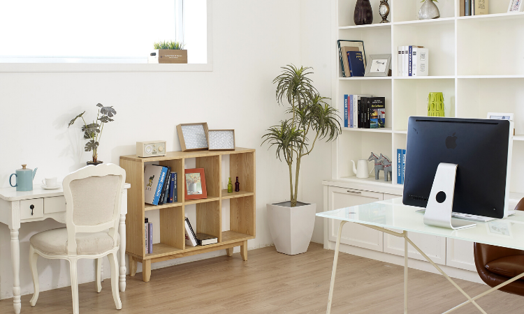 How to Make Your Home Office More Eco-Friendly